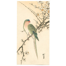 無款: Parrot and Plum (Muller Collection) - Artelino