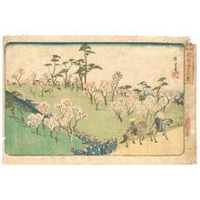 歌川広重: Asukayama - Edo Meisho - Artelino