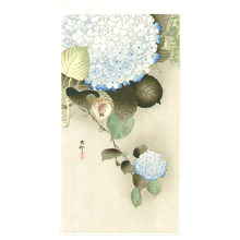 Ohara Koson: Sparrow on Hydrangea - Artelino