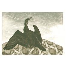 Aoyama Masaharu: Cormorant - Artelino
