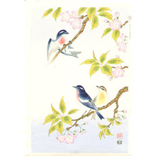 Ashikaga Shizuo: Birds and Cherry - Artelino