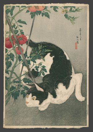 Takahashi Hiroaki: Black cat and tomato plant with keyblock - The Art of Japan