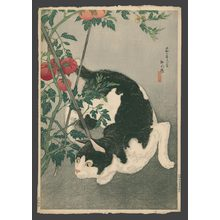 Takahashi Hiroaki: Black cat and tomato plant with keyblock - The Art of Japan