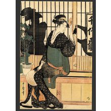 Kitagawa Utamaro: The Chiyozuru Teahouse - Orise - The Art of Japan