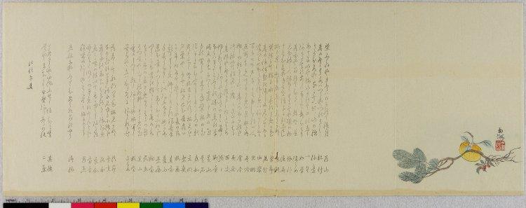 Paper DLTKs Custom Writing