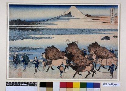 葛飾北斎: Sunshu Ono shinden 駿州大野新田 (Rice Paddies at Ono in Suruga Province) / Fugaku sanju-rokkei 冨嶽三十六景 (Thirty-Six Views of Mt Fuji) - 大英博物館
