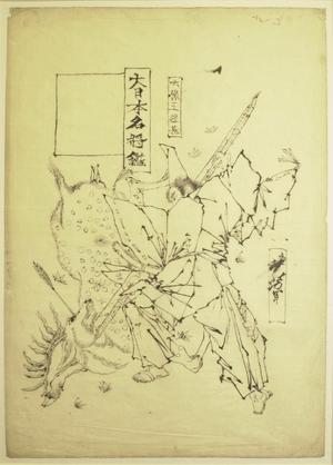 Tsukioka Yoshitoshi: Dai Nippon Meisho Kagami - British Museum
