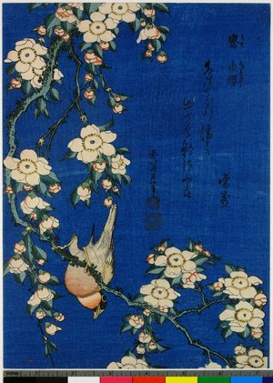 Katsushika Hokusai: Uso shidare-zakura - British Museum