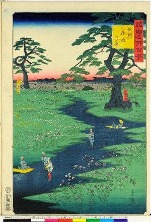 二歌川広重: Shinshu Kikyo no hara 信州桔梗の原 / Shokoku meisho hyakkei 諸国名所百景 - 大英博物館