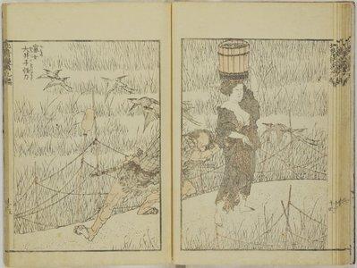 葛飾北斎: Hokusai manga vol.9 北斎漫画九編 (Random Drawings by Hokusai) / Hokusai manga 北斎漫画 - 大英博物館