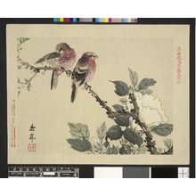 Imao Keinen: Keinen kacho gakan 景年花鳥画鏡 (Birds and Flowers Painting Album) - British Museum