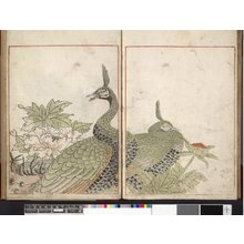 Toriyama Sekien: Sekien gafu 石燕画譜 - British Museum
