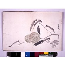 Go Shun: Kokoro no nezashi 心の根ざし - British Museum