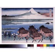 Katsushika Hokusai: Shun-shu Ono Shinden / Fugaku sanju Rokkei - British Museum