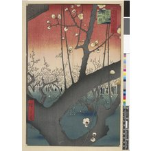 Utagawa Hiroshige: No 30 Kameido ume yashiki 亀戸梅屋敷 / Meisho Edo Hyakkei - British Museum