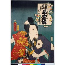 Utagawa Kunisada: Ushiwakamaru, Teizen no kiku (Ushiwakamaru, Chrysanthemum) / Tosei mitate sanju-rokkasen 當盛見立 三十六花撰 (Contemporary Kabuki Actors Likened to Thirty-Six Flowers (Immortals of Poetry)) - British Museum