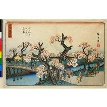 Utagawa Hiroshige: Koganei-tsutsumi no hana-zakari / Meisho Setsu Gekka - British Museum