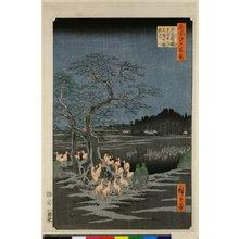 歌川広重: No 115 Oji Shozoku enoki Omisoka kitsunebi 王子装束えの木大晦日の狐火 / Meisho Edo hyakkei 名所江戸百景 - 大英博物館