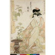 Kitagawa Utamaro: Yukun Gosetsu Ikebana-e - British Museum