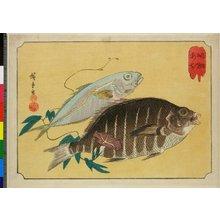 Utagawa Hiroshige: Shimadai Aji - British Museum