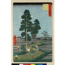 Utagawa Hiroshige: No 37 Akasaka Nawate-michi / Gojusan-tsugi Meisho Zue - British Museum