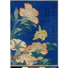 葛飾北斎: Jakuyaku Kanari - 大英博物館