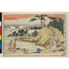 Katsushika Hokusai: Dai hachi-damme / Shinpan Ukie Chushingura - British Museum