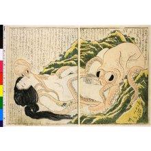 Katsushika Hokusai: Kinoe no komatsu 喜能会之故真通 - British Museum