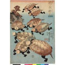 歌川国芳: Kiki myomyo 亀喜妙々 (Turtle Fun: Wonderful, Wonderful) - 大英博物館