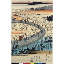 Utagawa Hiroshige II: Kameido Umeyashiki zenzu / Toto Meisho - British Museum