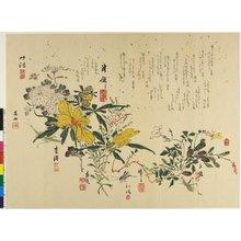 Bokusui: surimono - British Museum