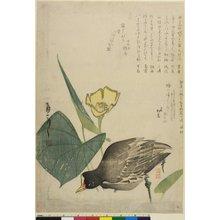 Yamanaka Shonen: surimono - British Museum
