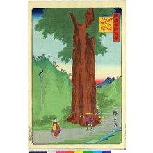二歌川広重: Koshu Yatate sugi 甲州矢立杉 / Shokoku Meisho Hyakkei 諸国名所百景 - 大英博物館
