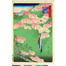 二歌川広重: Yamato Yoshinoyama 大和よし野山 / Shokoku Meisho Hyakkei 諸国名所百景 - 大英博物館