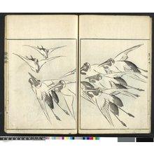 大西椿年: Sonan gafu 楚南画譜 (Sonan's Picture-album) - 大英博物館