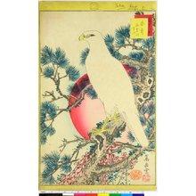 無款: Iki-utsushi shiju-hachi Taka - 大英博物館