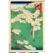 Utagawa Hiroshige II: Yamato Yoshino-yama 大和よし野山 / Shokoku meisho hyakkei 諸国名所百景 - British Museum