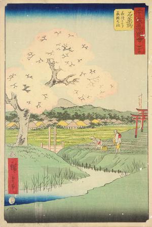 歌川広重: Yoshitsune's Cherry Tree and the Shrine to Noriyori at Ishiyakushi, no. 45 from the series Pictures of the Famous Places on the Fifty-three Stations (Vertical Tokaido) - ウィスコンシン大学マディソン校