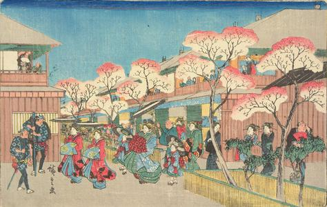歌川広重: Cherry Blossoms at Yoshiwara, from the series Famous Places in Edo - ウィスコンシン大学マディソン校