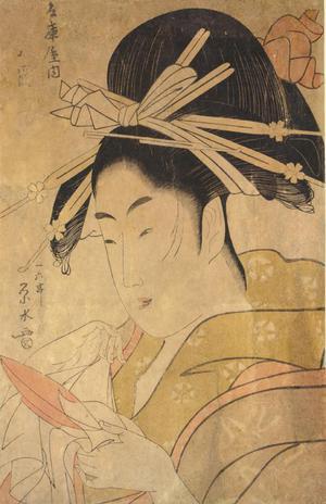Ichirakutei Eisui: The Courtesan Tsukioka of the Hyogo Establishment, from a series of Bust Portraits of Courtesans - University of Wisconsin-Madison
