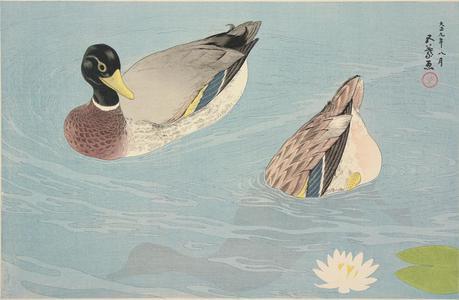 橋口五葉: Ducks in a Stream - ウィスコンシン大学マディソン校