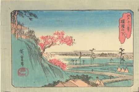 Utagawa Hiroshige: Below Dokan Hill, from the series Twelve Views of Edo - University of Wisconsin-Madison