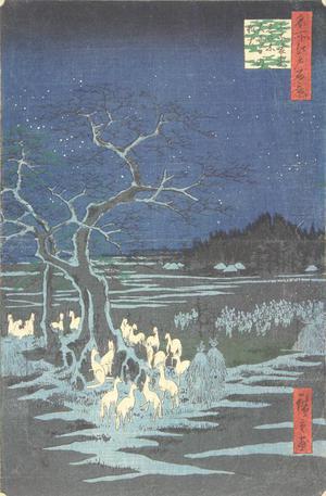 歌川広重: Fox Fires on New Year's Eve at the Shozoku Hackberry Tree in Oji, no. 118 from the series One-hundred Views of Famous Places in Edo - ウィスコンシン大学マディソン校
