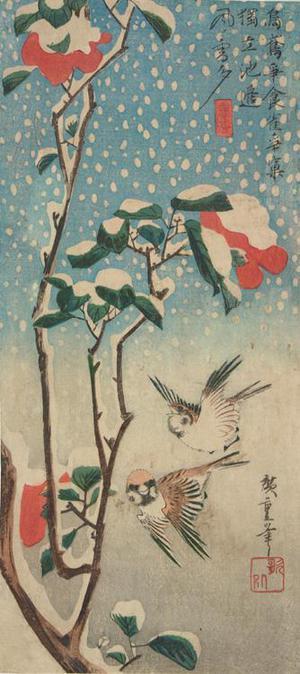 歌川広重: Sparrows, Flowering Sazanka, and Falling Snow - ウィスコンシン大学マディソン校