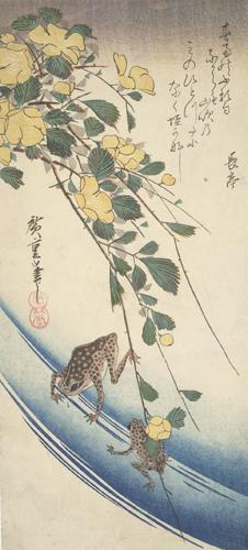 歌川広重: Frogs and Yamabuki Flowers - ウィスコンシン大学マディソン校