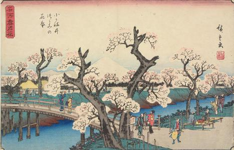 Utagawa Hiroshige: Cherry Trees in Full Bloom on the Koganei Embankment, from the series Famous Places in Snow, Moon, and Flowers - University of Wisconsin-Madison
