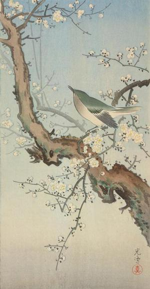 Tsuchiya Koitsu: Warbler on Plum Branch - University of Wisconsin-Madison