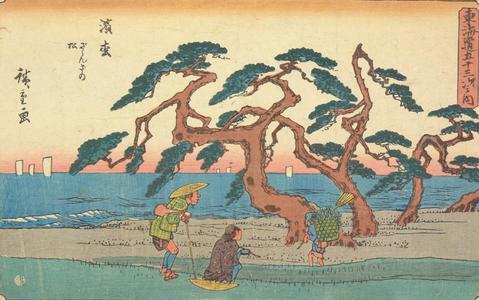 歌川広重: The Murmuring Pines at Hamamatsu, no. 30 from the series Fifty-three Stations of the Tokaido (Gyosho Tokaido) - ウィスコンシン大学マディソン校