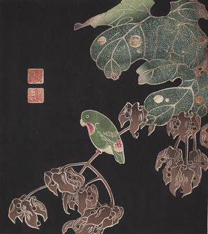 伊藤若冲: Green Parrot on Vine, no. 2 from the series Six Genuine Pictures by Ito Jakuchu - ウィスコンシン大学マディソン校