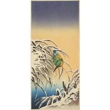 Narazaki Eisho: Kingfisher on Snowy Reeds - ウィスコンシン大学マディソン校